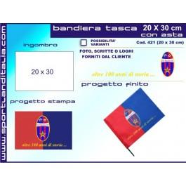 Project Flag 20 cm X 30 cm