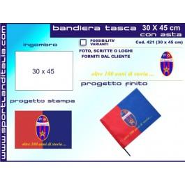 Project Flag 30 cm X 45 cm